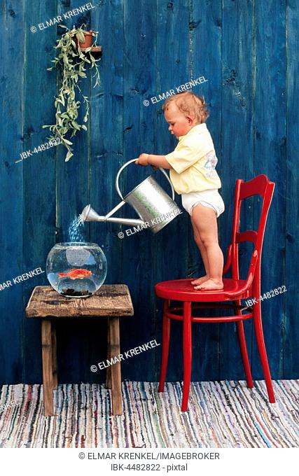 Three year-old girl pouring water in a goldfish bowl, Austria