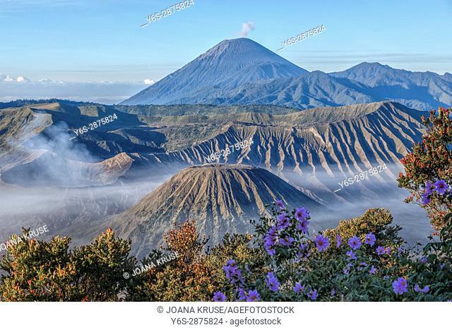 Bromo Tengger Semeru National Park, Java, Indonesia, Asia
