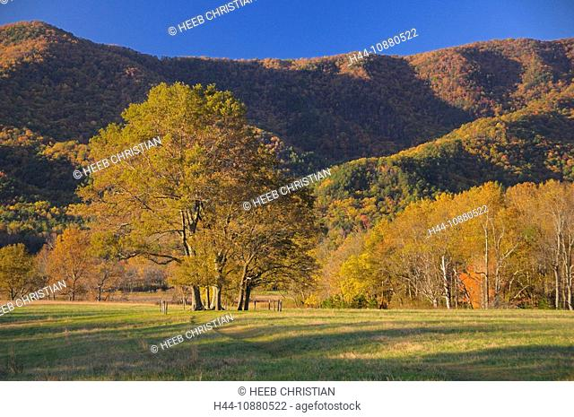 Fall, colours, colors, Cades Cove, Great Smoky Mountains National Park, Tennessee, USA