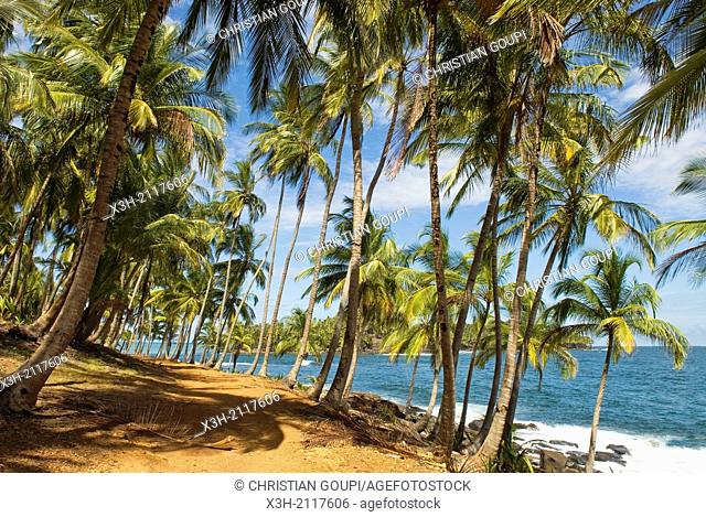 path on Pointe des Cayes, Ile Royale, Iles du Salut Islands of Salvation, French Guiana, overseas department and region of France