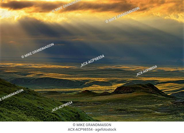 Killdeer Badlands amongst grasslands (East Block) Grasslands National Park Saskatchewan Canada