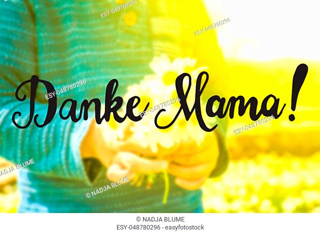 German Calligraphy Danke Mama Means Thank You Mom. Cute Little Kid Is Holding A Bouquet Of Daisy Flower. Sunny And Spring Flower Field