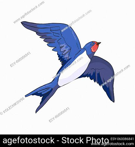 Simplified image of a flying swallow isolated on a white background. Vector, illustration