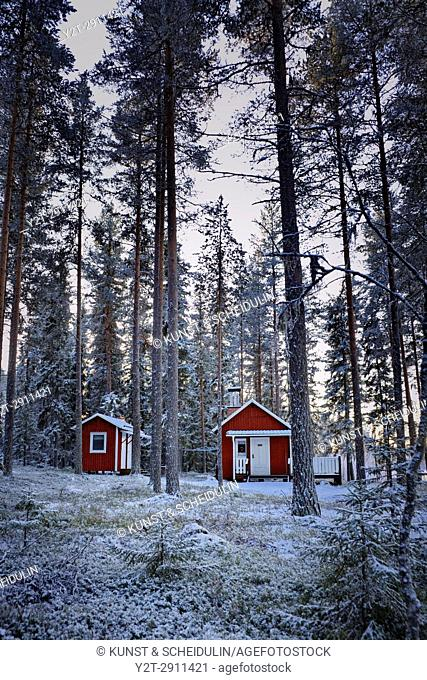 A wooden cottage is standing at snowy forest. Bredbyn, Västernorrland, Sweden
