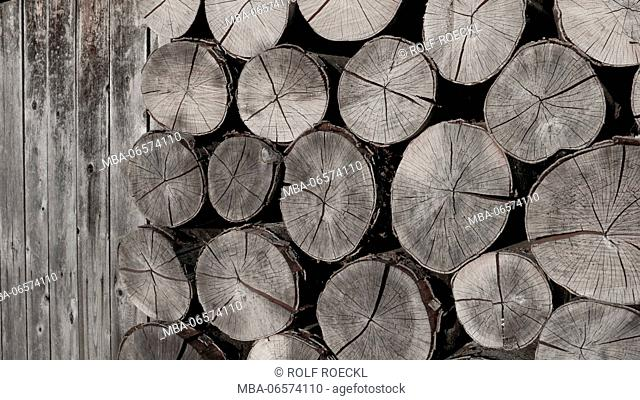 sawed and stacked firewood at wooden wall, beechwood