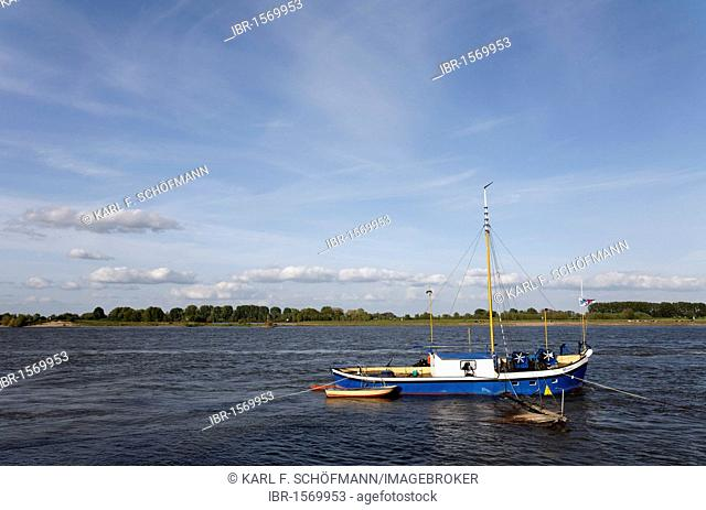 A small fishing boat on the river Rhine, in Kalkar-Grieth, Lower Rhine region, North Rhine-Westphalia, Germany, Europe