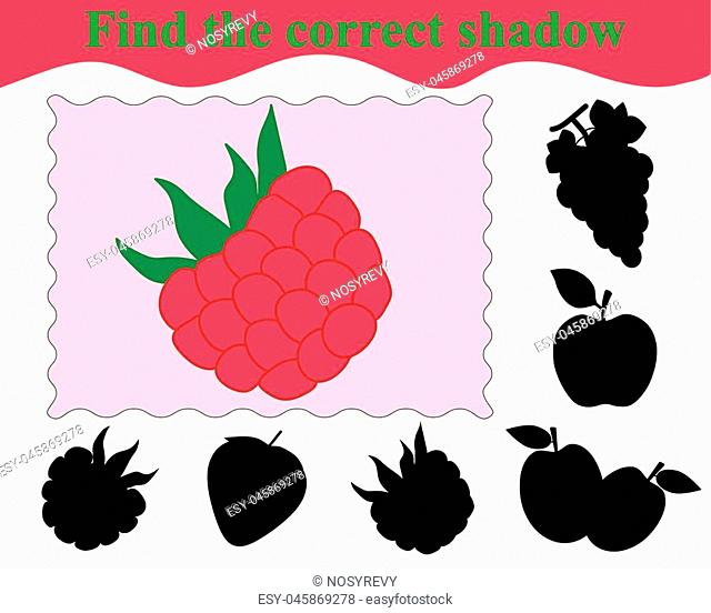 Educational game for children. Find the correct shadow of raspberry. Vector illustration