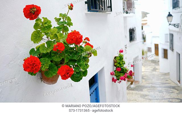 Town of Frigiliana, Málaga, Andalusia, Spain