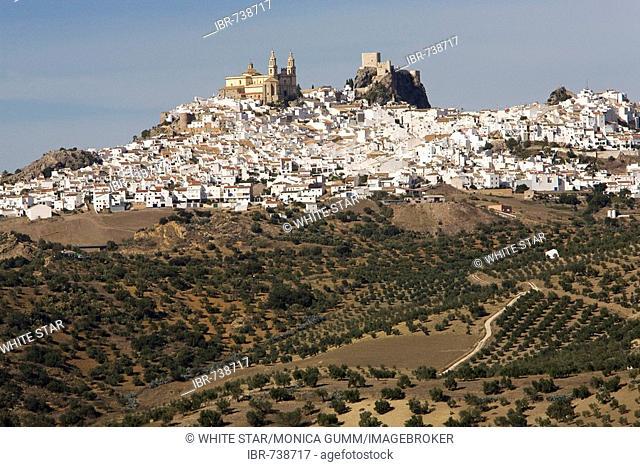 Parroquia de Nuestra Señora de la Encarnación (Parish of Our Lady of the Incarnation) next to the fortress in Olvera, Andalusia, Spain, Europe