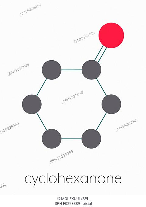 Cyclohexanone organic solvent molecule, illustration