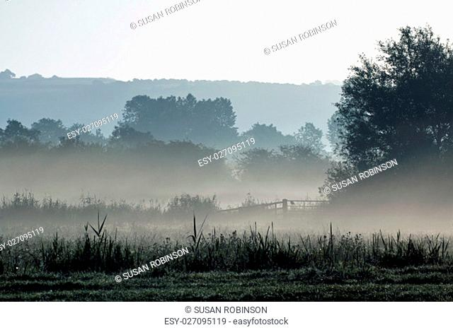 Early morning mist across meadow at Arundel, West Sussex