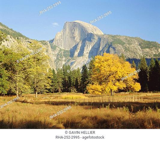 Half Dome in the autumn, Yosemite National Park, California, USA