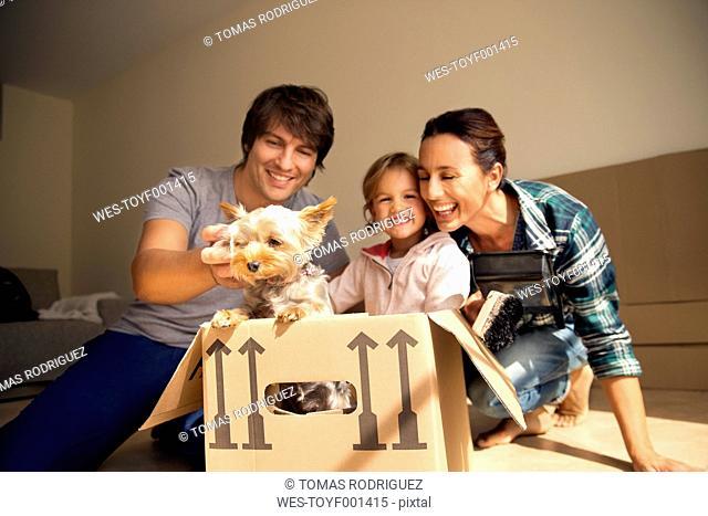 Happy family with dog inside cardboard box