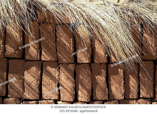 Adobe bricks in Bolivian highlands. Bolivia, South America
