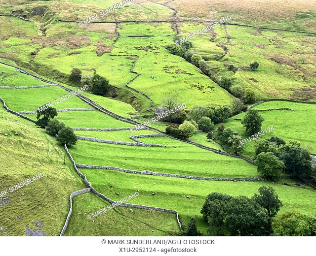Pattern of Meadows and Dry Stone Walls from above Gordale Scar in Malhamdale Yorkshire Dales England