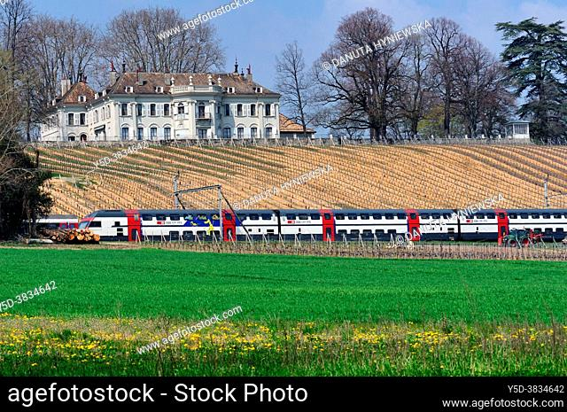 train crossing vineyards in front of Château de Crans facing Lake Geneva and Mont Blanc is is organic wine estate, Château is one of the most elegant historic...