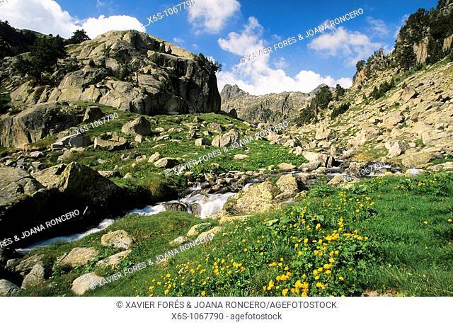 Around Colomèrs Mountain hut, Aran Valley, Lleida, Spain / Alrededores del Refugio de Colomèrs, Vall d'Aran, Lleida, España