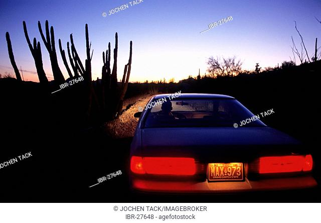 USA, United States of America, Arizona: Organ Pipe National Monument, car on the loog road through the park
