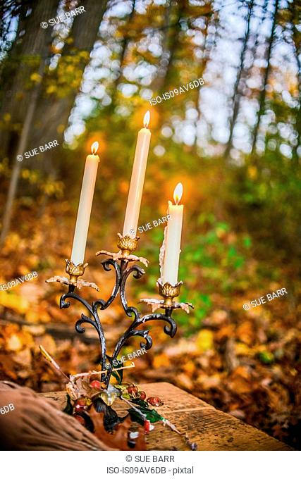 Candlelit candlestick in autumn forest at dusk
