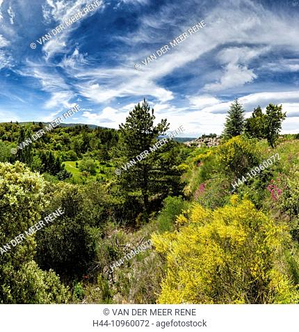 vue, town, village, forest, wood, trees, spring, mountains, hills, Bonnieux, Vaucluse, France, Europe
