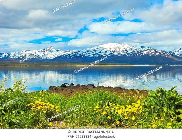 snow summer in northern Norway, june 2015 | usage worldwide. - Tromsö/Norway