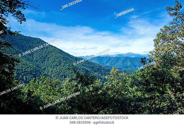 Natural environment in Liebana. Cantabria. Spain. Europe