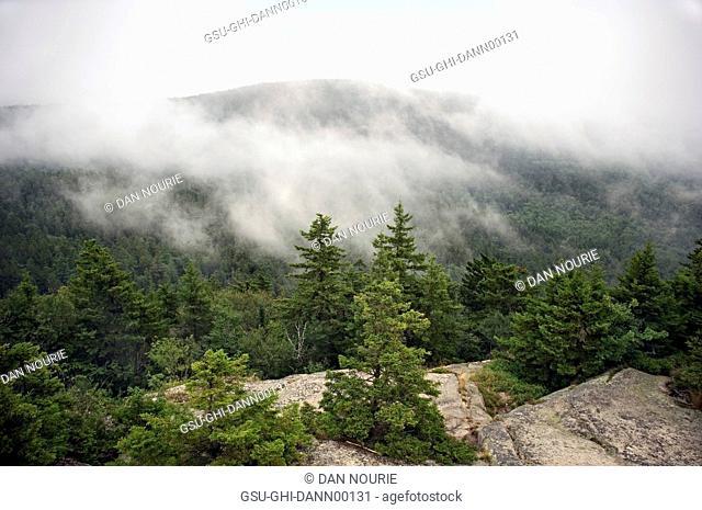 Fog Drifting over Mountain