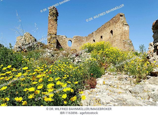 Former convent church Rocceletta, Santa Maria della Rocella, Parco Archeologico di Scolacium, Calabria, Italy, Europe