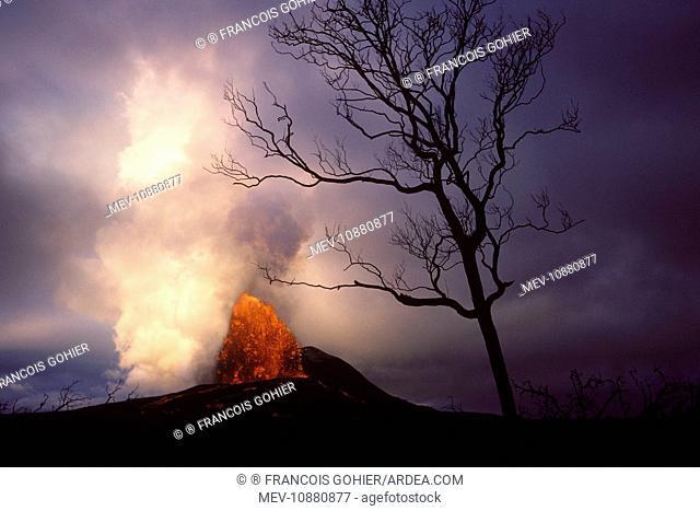 Kilauea Volcano - Hawaii (Volcano Kilauea). Big Island - USA - 1986 eruption of the Pu'u O'o Vent - Lava Fountain