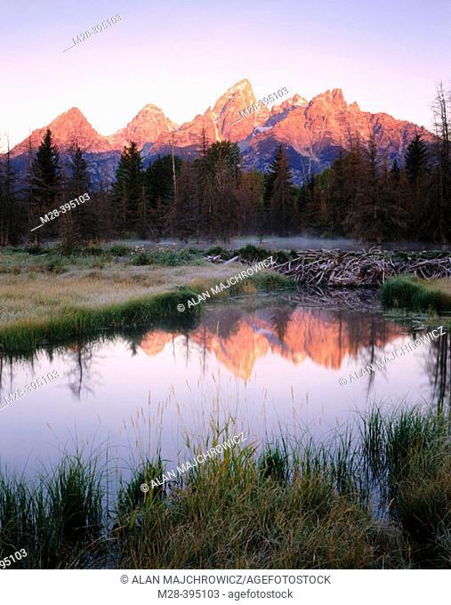 Dawn over the Teton Range from Beaver Pond along the Snake river. Grand Teton National Park. Wyoming. USA