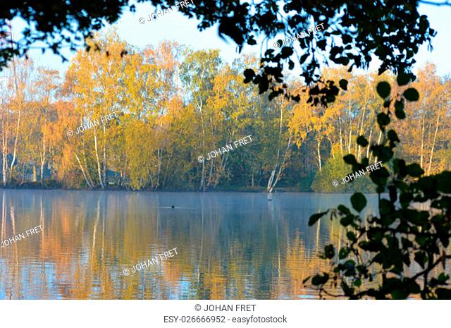 View of a lake with autumn colored trees reflecting on the water with a frame of tree leafs on the top and right