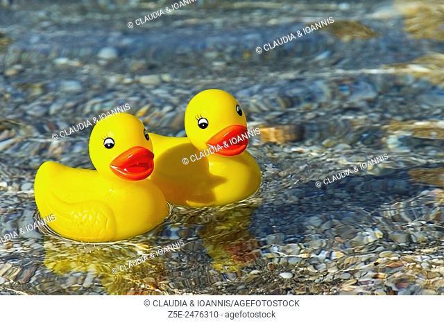 Two rubber ducks swimming in the Aegean Sea