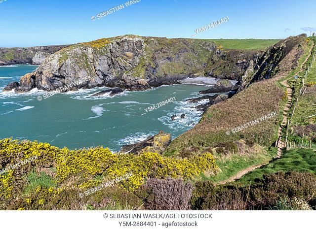 Pwll Llong seen from Wales Coast Path near Trefin, Pembrokeshire Coast National Park, Wales, United Kingdom, Europe