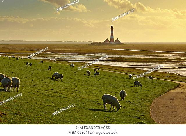 Germany, Schleswig-Holstein, North Frisia, Eiderstedt, Westerhever Lighthouse