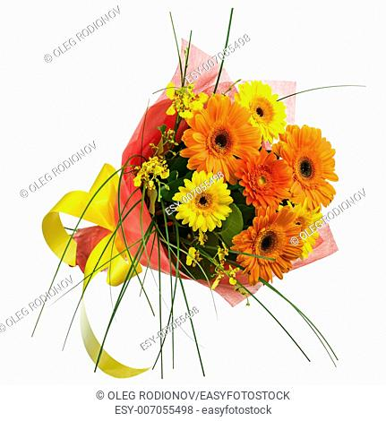 Bouquet from Gerbera Flowers Isolated on White Background. Closeup
