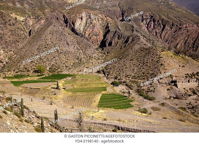 Landscapes on the provincial route 52 that joins pumamarca with large salinas passing through the Cuesta del Lipan, Jujuy, Argentina.