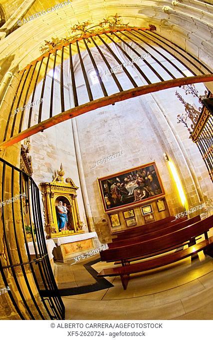 Cathedral of Santo Domingo de la Calzada, Renaissance Style, Historic-Artistic Monument, Santo Domingo de la Calzada, Camino de Santiago, St