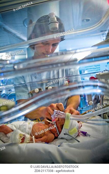 Premature in ICU