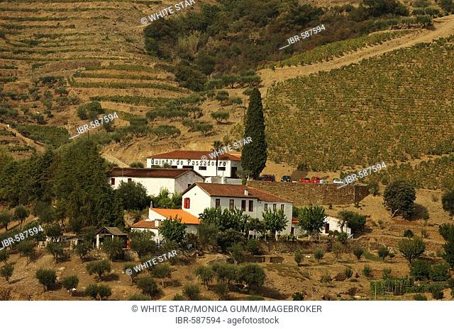 Winegrowing in the Vale Mendiz, production of red wine and port on the Quinta do Passadouro, Pinhao, Douro Region, North Portugal, Europe