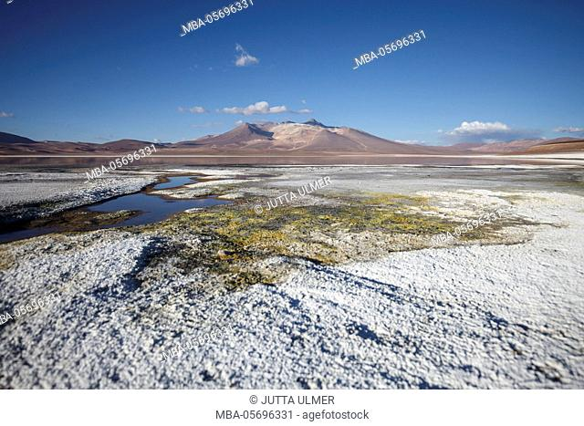 Chile, national park Nevado Tres Cruzes, Laguna del Negro Francisco