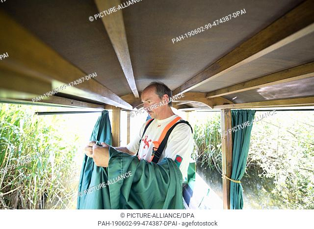 18 May 2019, Saxony, Moritzburg: The gondolier Jens Friebel fastens curtains made of fabric to the bank of the Dippelsdorfer Teich in his gondola