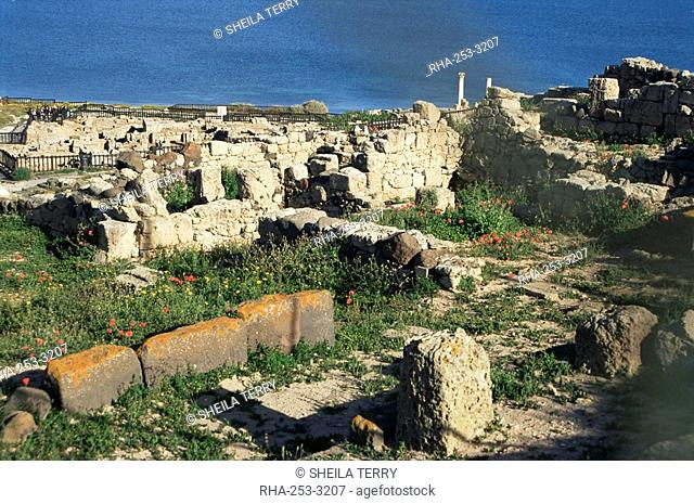 Tharros, Punic and Roman ruins of city founded by Phoenicians in 730 BC, near Oristano, Sardinia, Italy, Mediterranean, Europe