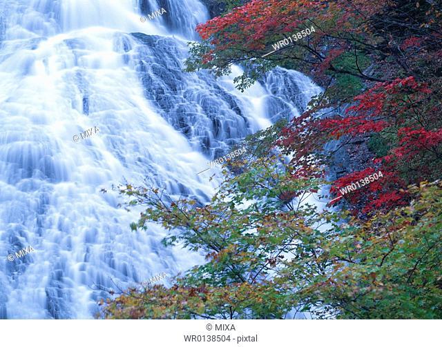 Yutaki Waterfall, Nikko, Tochigi, Japan