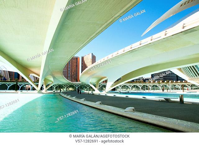 Monteolivet bridge, view from below. City of Arts and Sciences, Valencia, Spain
