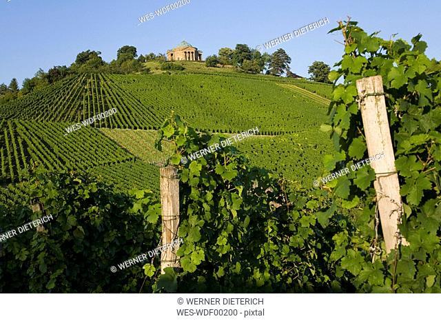 Germany, Baden-Wuerttemberg, Stuttgart, Sepulchral Chapel on Wuerttemberg Mountain, Vineyards