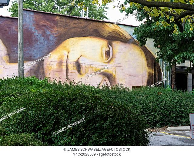 Mona Lisa mural painted on buildings in Short North area of Columbus Ohio United States