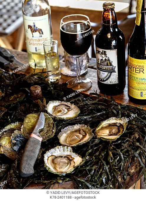 Oysters at Everts Sjobod, Grebbestad, bohuslan region, west coast, Sweden