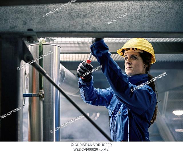 Craftswoman wearing hard hat at work