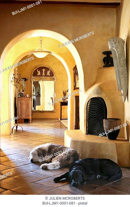 Pet dogs laying on tile floor in front of kiva fireplace