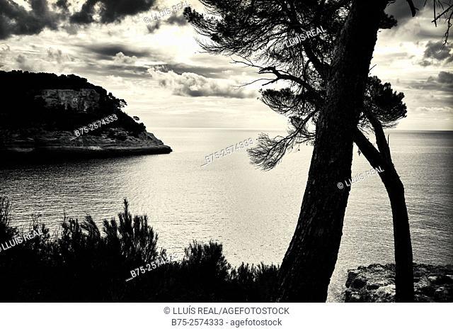 View of Cala Mitjana, Ferreries, South Coast, Menorca, Balearic Islands, Mediterranean Sea, Spain